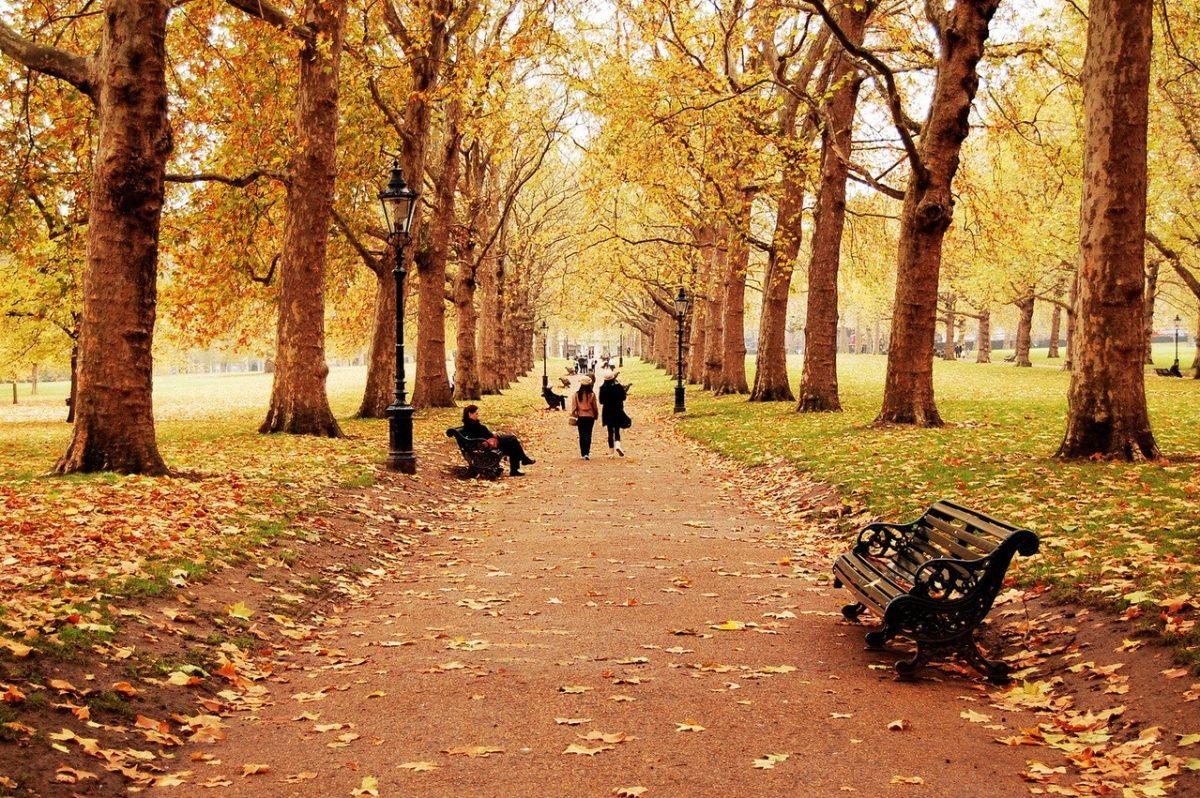 Rozświetlamy ponurą jesień – ciekawe dodatki odzieżowe